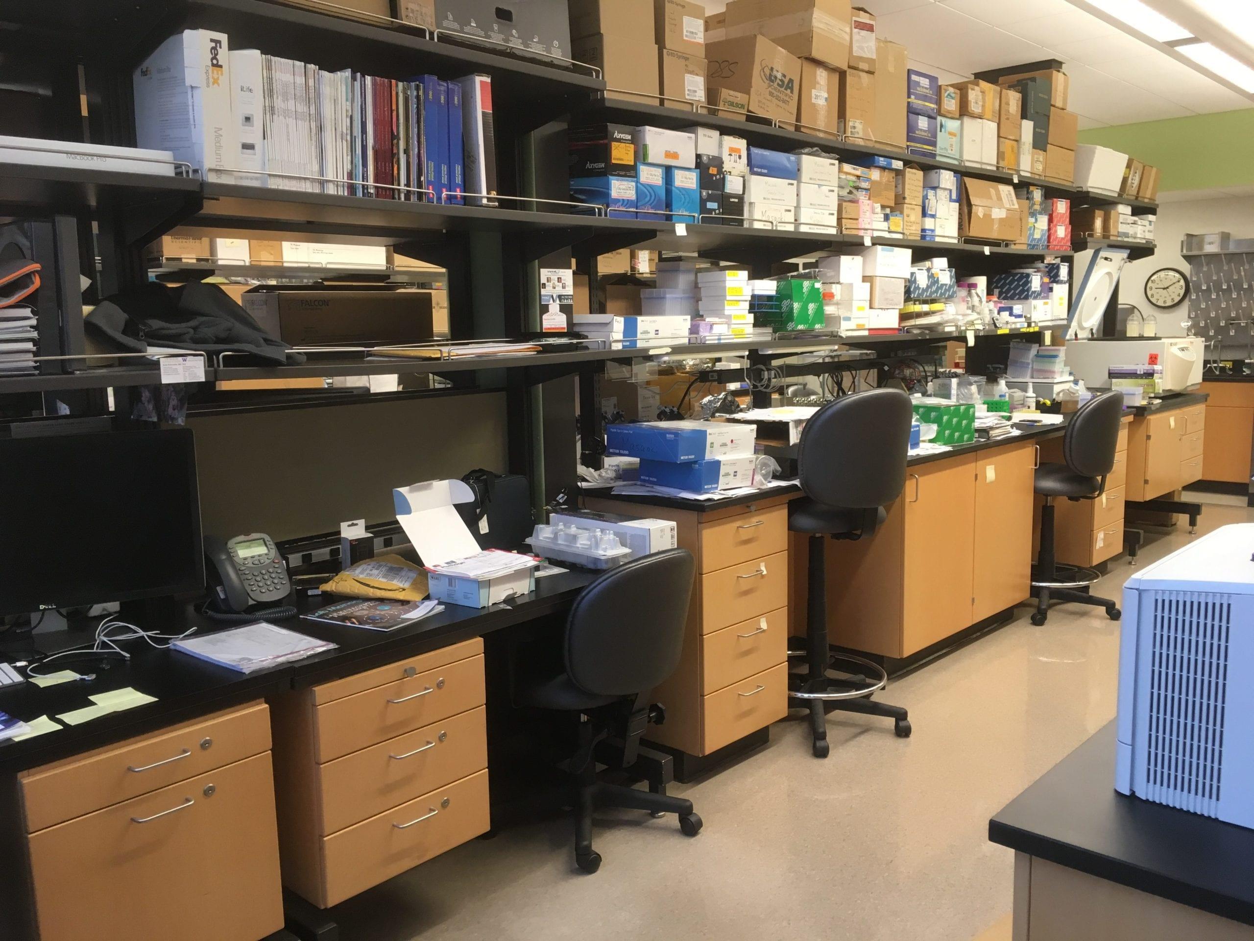 Kawasumi Lab